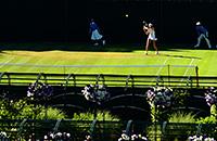 фото, Уимблдон, болельщики, Nike, Ястреб Руфус, Елизавета Вторая, Герцогиня Кембриджская Кэтрин