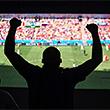 премьер-лига Россия, премьер-лига Англия, бундеслига Германия, лига 1 Франция, серия А Италия, примера Испания