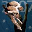 Глеб Гальперин, Пекин-2008, сборная России жен, прыжки в воду, Дмитрий Доброскок, сборная России жен, сборная Бразилии жен, дзюдо, сборная России, рапира, Саламу Межидов