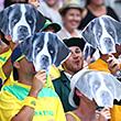 Самые яркие болельщики Australian Open