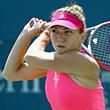 Мария Шарапова, Серена Уильямс, US Open, Симона Халеп, WTA, ставки