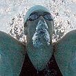 сборная Черногории, видео, рекорды, сборная России, Дмитрий Саутин, прыжки в воду, синхронное плавание, водное поло, плавание, Майкл Фелпс, чемпионат мира