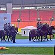 Лужники, Премьер-лига Россия