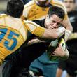 бизнес, World Rugby (IRB), Кубок шести наций, сборная Новой Зеландии, Super Rugby, сборная Австралии, Кубок мира, Енисей-СТМ, регби-7, Александр Первухин, Rugby Championship, Робби Динс, Ричи Маккоу