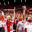 чемпионат мира, сборная Польши, фото, болельщики