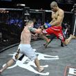 смешанные единоборства, UFC, Strikeforce, Скотт Кокер, Bellator