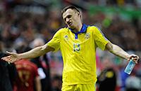 сборная Украины, сборная Чехии, сборная Словакии, сборная Румынии, сборная Уэльса, сборная Ганы, фото, сборная Алжира