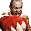UFC, Pride FC, Вандерлей Силва