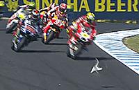 происшествия, Дукати, чемпионат мира MotoGP, Гран-при Австралии MotoGP, Андреа Янноне