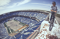 Детройт, стадионы