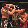 Брок Леснар, смешанные единоборства, UFC, Дэйна Уайт, Тим Сильвия, Мирко Филипович