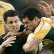бизнес, Rugby Championship, сборная ЮАР, сборная Новой Зеландии, сборная Австралии, Кубок мира