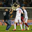сборная Сербии, болельщики, сборная Албании, Евро-2016