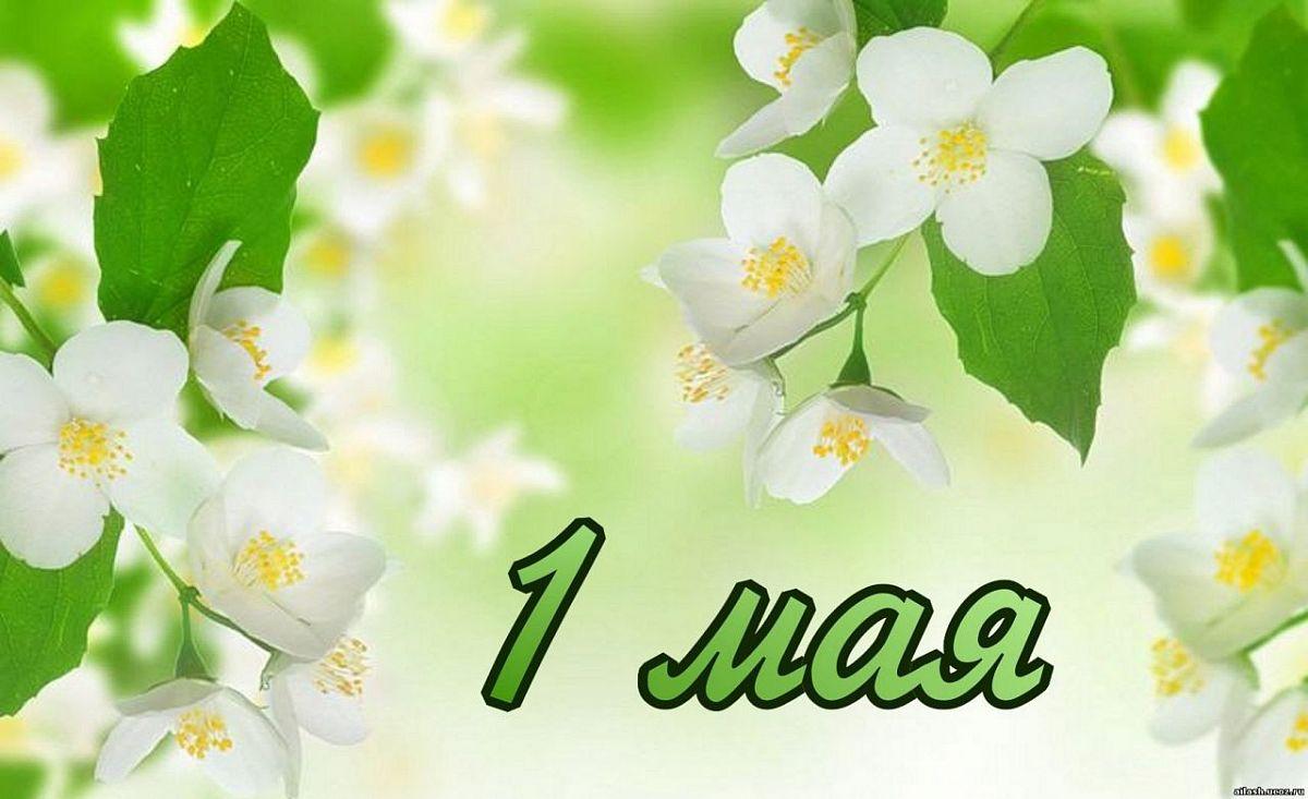 Поздравления с праздником весны прикольные