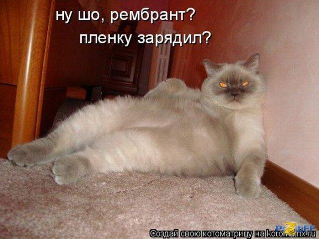 http://s5o.ru/storage/simple/ru/ugc/79/77/13/14/ruu4dd0db4aeb.jpg