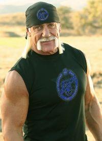 Hollywood Hogan, Hollywood Hogan