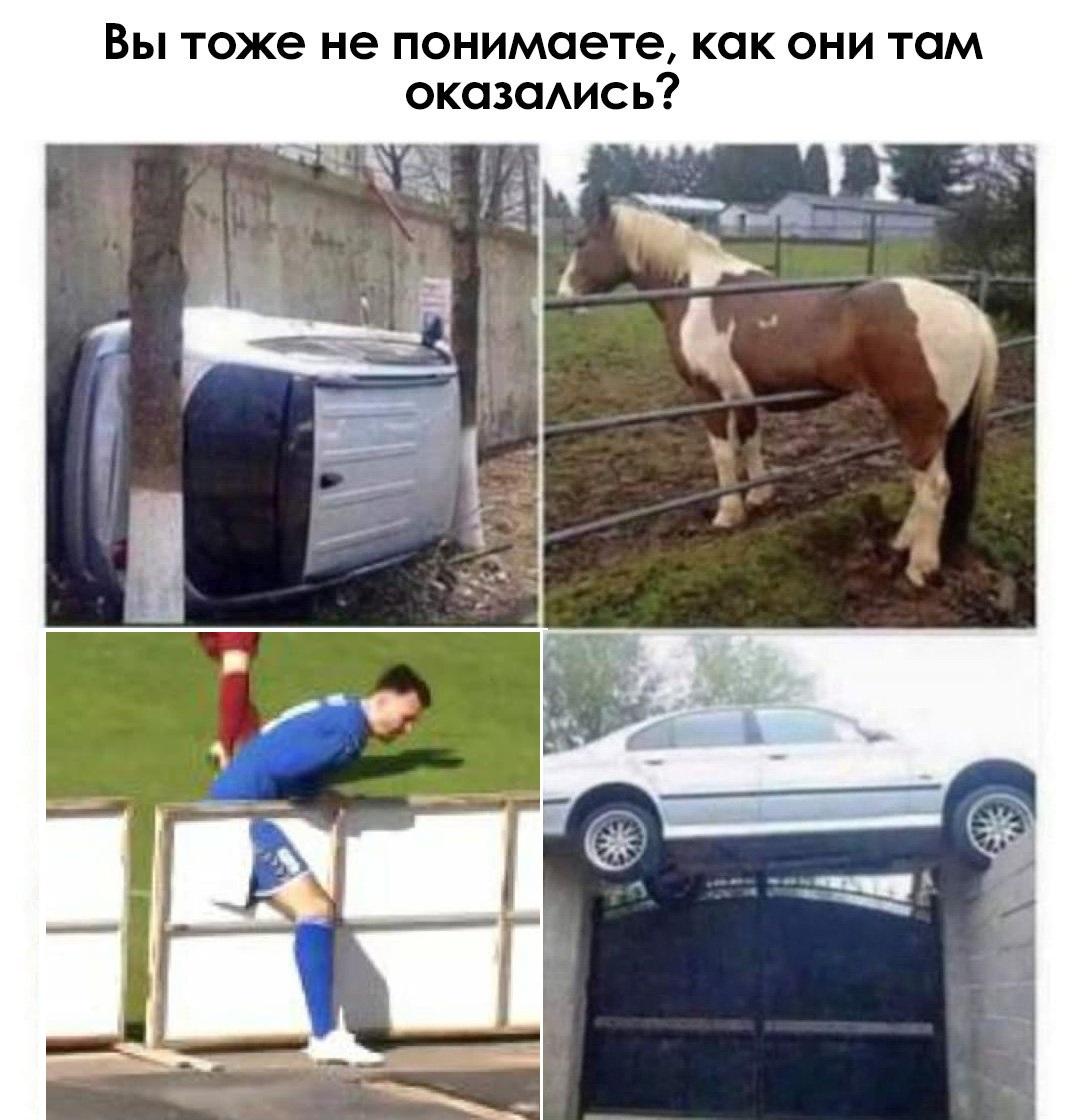 https://s5o.ru/storage/dumpster/7/a6/01f39f5b456bf72f36874f258b55a.JPG