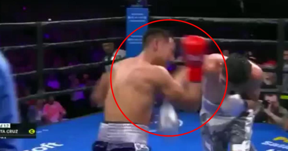 Лео Санта Крус, бокс