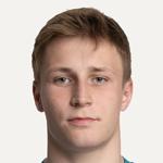Дмитрий Сибилев