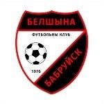 FC Volna Pinsk - logo
