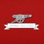 Arsenal2007, Arsenal2007