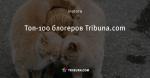 Топ-100 блогеров Tribuna.com