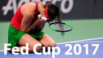 Sabalenka vs Stephens Highlights HD / Fed Cup 2017 / Belarus - USA / Final