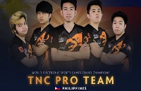 Danish Bears, TNC, WESG