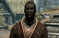 Bethesda Game Studios, The Elder Scrolls Online, Skyrim, Экшены, Ролевые игры, Bethesda Softworks, The Elder Scrolls 6