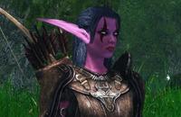 Моды на Скайрим, Моды, Skyrim, World of Warcraft