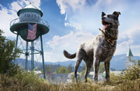 The Last of Us, Red Dead Redemption 2, Far Cry 5, Watch Dogs 2, Fallout 4