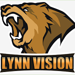 Lynn Vision CS:GO