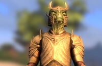 Skyblivion, Моды на Скайрим, Skyrim, The Elder Scrolls IV: Oblivion, Ремейки, Моды, Bethesda Game Studios, Bethesda Softworks