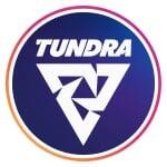 Tundra Игры