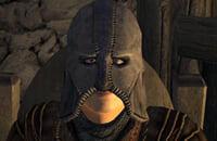 Skyrim, The Elder Scrolls 6, Bethesda Softworks, Экшены, Bethesda Game Studios, Тодд Говард, Ролевые игры, Подборки