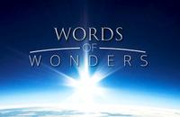 Words Of Wonders, Гайды, Головоломки