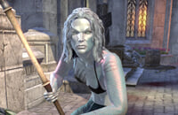 The Elder Scrolls Online, The Elder Scrolls 6, MMO, The Elder Scrolls IV: Oblivion, Bethesda Softworks, Ролевые игры, Bethesda Game Studios, Skyrim, Экшены