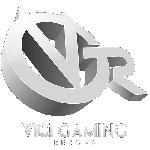 Vici Gaming Reborn Dota 2