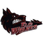 Elite Wolves Dota 2 - материалы