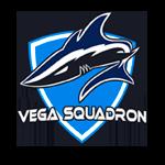 Vega Squadron CS:GO - материалы