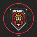 Imperial Pro Gaming - материалы Dota 2 - материалы
