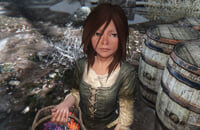 Bethesda Softworks, Skyrim, Тодд Говард, Bethesda Game Studios, Ролевые игры