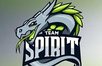 Team Spirit, Александр «DkPhobos» Кучеря