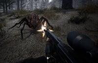STALKER 2, Шутеры, Will To Live Online, MMO, Ролевые игры