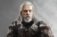 Witcher, Ведьмак 3: Дикая Охота, Ролевые игры