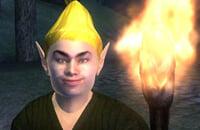Bethesda Softworks, Ролевые игры, The Elder Scrolls IV: Oblivion, Тесты, Тодд Говард, Экшены, Bethesda Game Studios