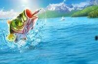 Промокоды, Fishing Clash, Android, iOS