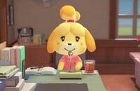 Nintendo Switch, Nintendo, Animal Crossing: New Horizons, Симуляторы