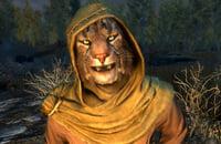 Экшены, Skyrim, Ролевые игры, The Elder Scrolls 6, Bethesda Softworks, Bethesda Game Studios