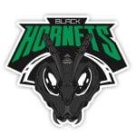 Black Hornets Gaming Dota 2